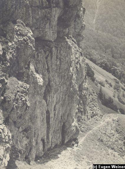 Pod skalami v Malej Fatre